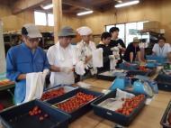 ふるさと就農体験研修を開催しました。